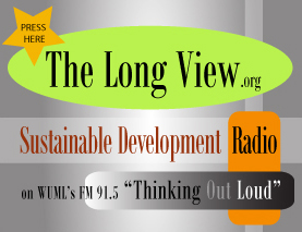 The Long View logo